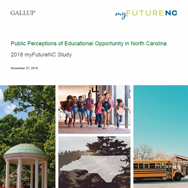 Cover of Gallup survey report
